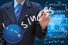 hawaii typical business services and concepts