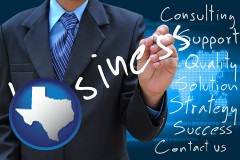 typical business services and concepts - with Texas icon