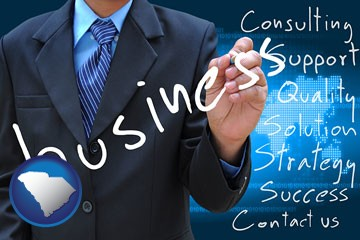 typical business services and concepts - with South Carolina icon