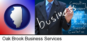 Oak Brook, Illinois - typical business services and concepts